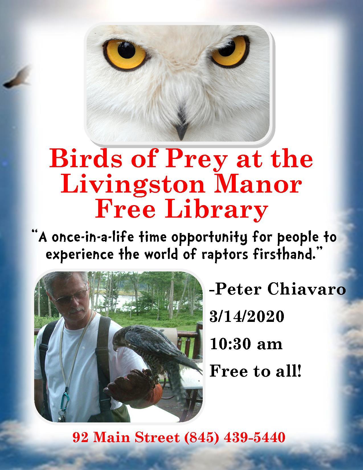birds of prey flyer